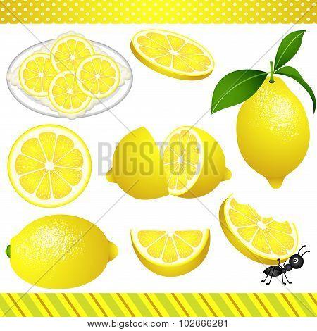 Lemon Digital Clipart