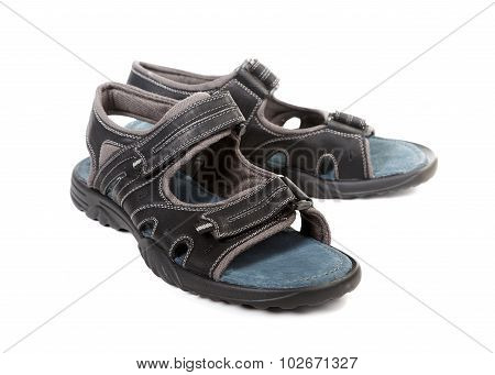 Summer Men's Sandals Isolated On White Background