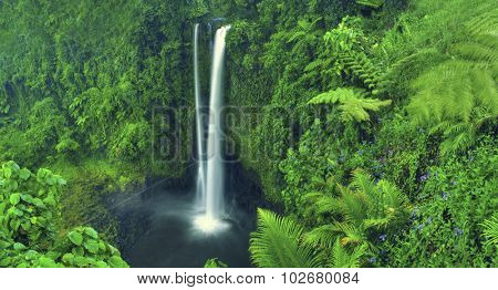 Waterfall Nature Scenics Waterfall Forest Concept