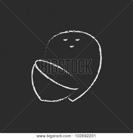 Coconut hand drawn in chalk on a blackboard vector white icon isolated on a black background.