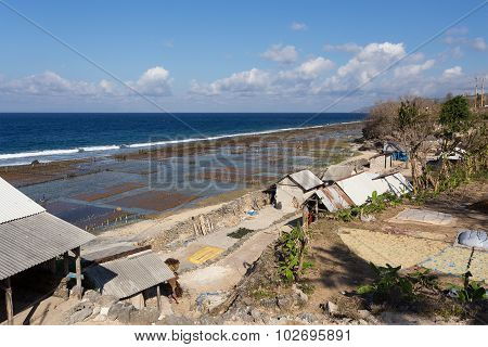 Plantations Of Seaweed On Beach In Bali, Nusa Penida