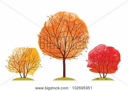 Autumn trees.