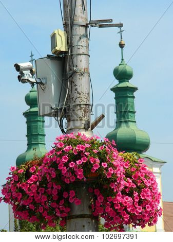 Pole With Flowers And Security Cameras.