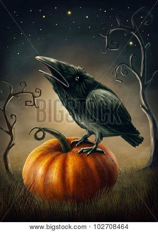 Black raven on the pumpkin