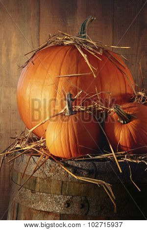 Rustic autumn still life with pumpkins on barrel