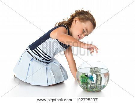 Girl is watching fish in an aquarium