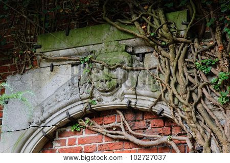 Stone arch with lion's head covered by old ivy