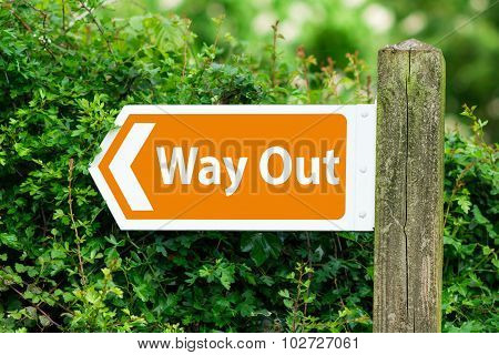 Direction Arrow, Sign To Way Out in Orange Color