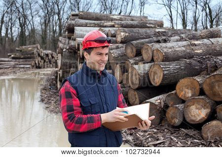 Lumber Industry Engineer