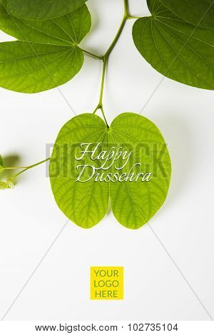 Piliostigma racemosum, indian festival dussehra, apta leaf with branch, isolated on white background