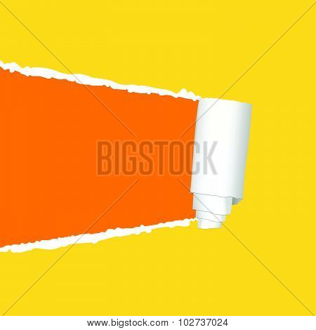 Tearing Paper Vector In Colorful
