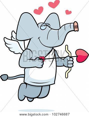 Cupid Elephant
