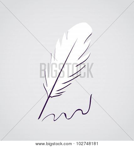 White feather calligraphic pen isolated