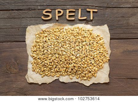 Raw Organic Spelt Grain With Wooden Word