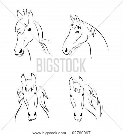 Set symbols outline head horse isolated on white background