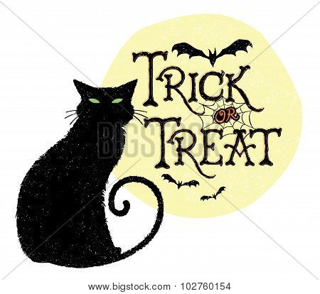 Trick or Treat Cat