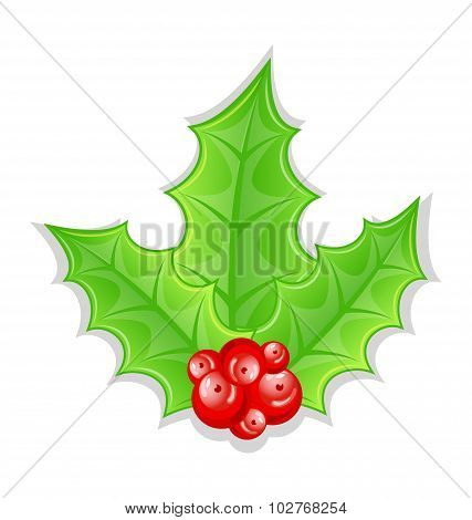 Christmas decoration holly berry branches isolated on white back