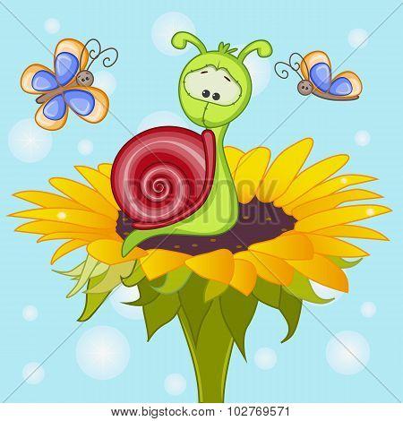 Snail On The Flower