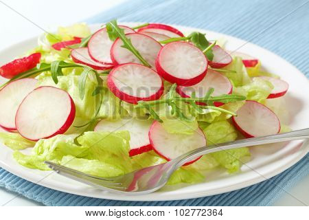 close up of lettuce, arugula and sliced radishes on white plate and blue place mat