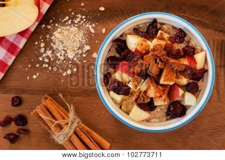 Bowl of autumn inspired oatmeal with apples and cranberries