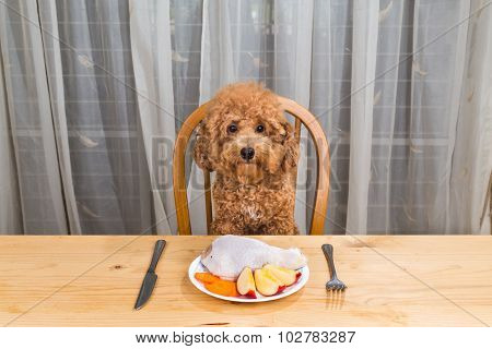 Concept Of Dog Having Delicious Raw Meat Meal On Table.