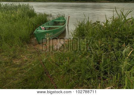 Boat Between Herbs