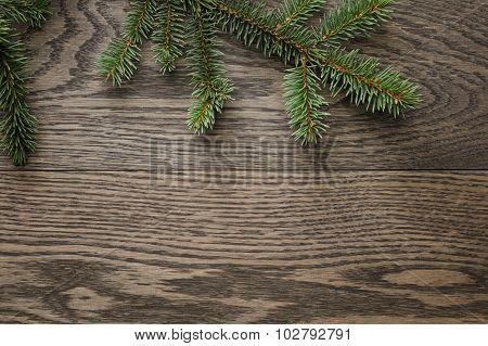 spruce twig on oak table, christmas