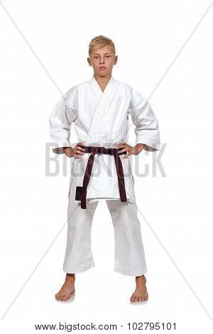 Karate Boy With Brown Belt