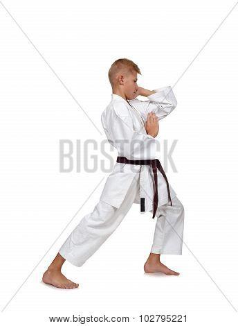 Young Karate Boy In Kimono