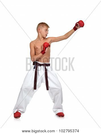 Young Boy Making Karate Punch