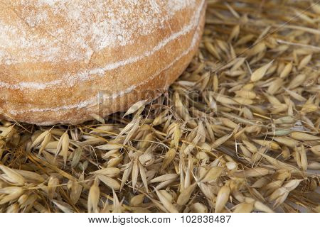 White loaf of homemade bread on a table with rye spikelets on the background .