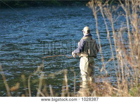 Fly Fishing 31