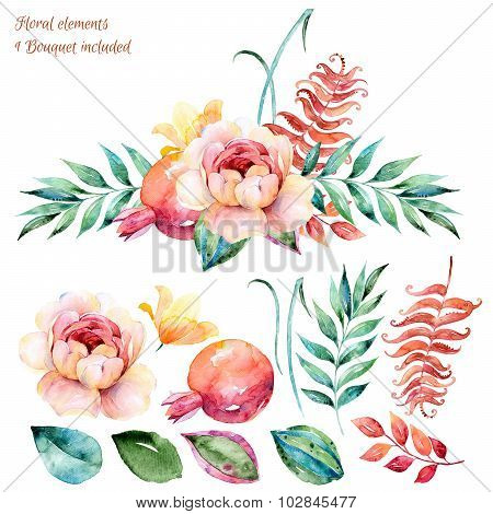 Colorful white-purple floral collection with leaves and roses,drawing watercolor