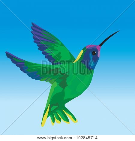 Stylized humming bird flying on clear sky - Vector illustration
