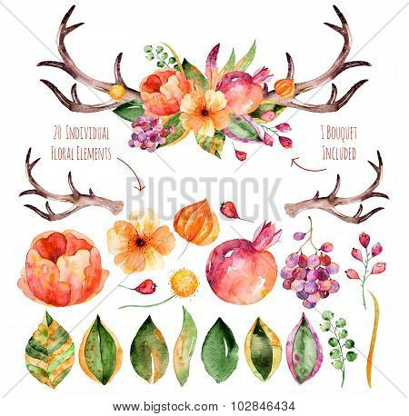 Colorful purple floral collection with leaves,horns and flowers,drawing watercolor