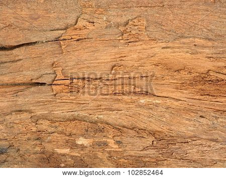 Old Hard Wood Texture