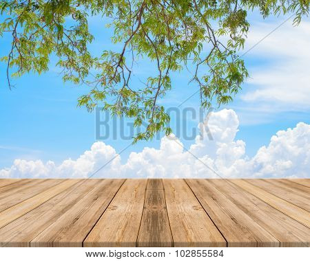 Vintage Wooden Board Empty Table sea with tree - can be used for display or montage your products.