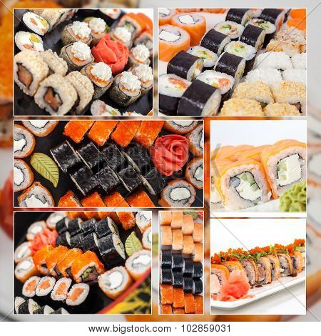 Assorted Sushi Big Collage Photo Set