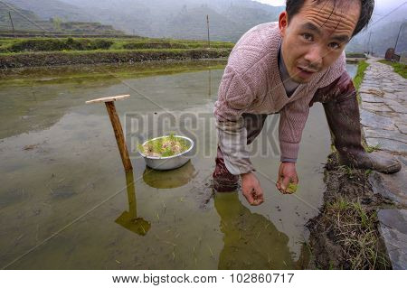 Farmers Busy With Planting Crops In Sw China.