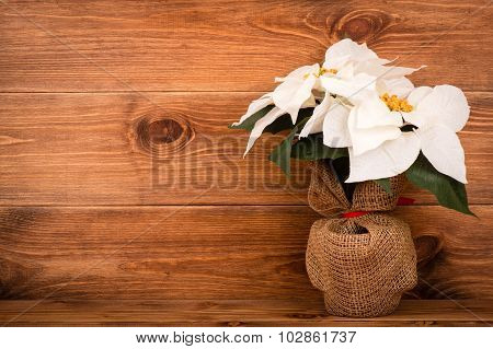 Christmas decoration - artificial poincettia (euphorbia) with white flowers on the wooden background