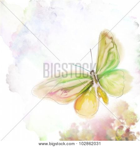 Digital Painting of Colorful Butterfly and Flowers