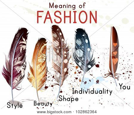Fashion Conceptual Background With Colorful Feathers. What Mean Fashion