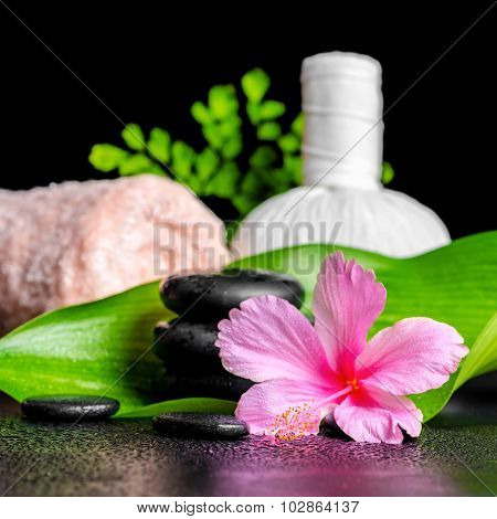 Beautiful Spa Concept Of Pink Hibiscus Flower, Leaves, Thai Herbal Compress Ball, Towel And Stones W
