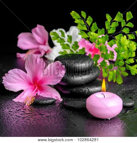 Beautiful Spa Concept Of Pink Hibiscus Flowers, Fern Branch, Candle And Zen Basalt Stones With Drops
