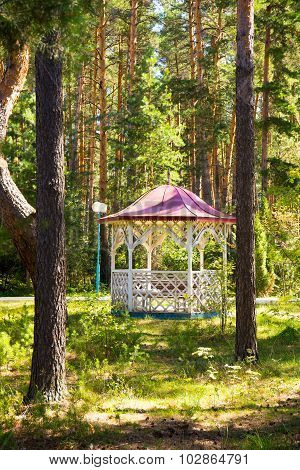 Comfortable arbour in the park green forest