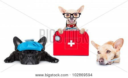 Medical Doctor Sick And Ill Dogs