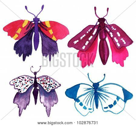 A collection of bright watercolour butterflies on white background