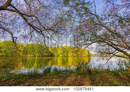 Autumn Landscape With Background Colourful Trees, Lake And Tree Branches Above Ground