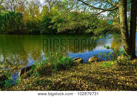 Autumn Landscape With Background Trees, Lake And Tree Branches Above River