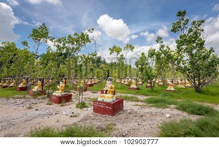 Bodhi Tataung Standing Buddha